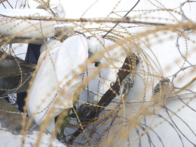 A prison guard's gun lays among barbed wire on the roof of the Civil Prison. Picture: AP/Dieu Nalio Chery