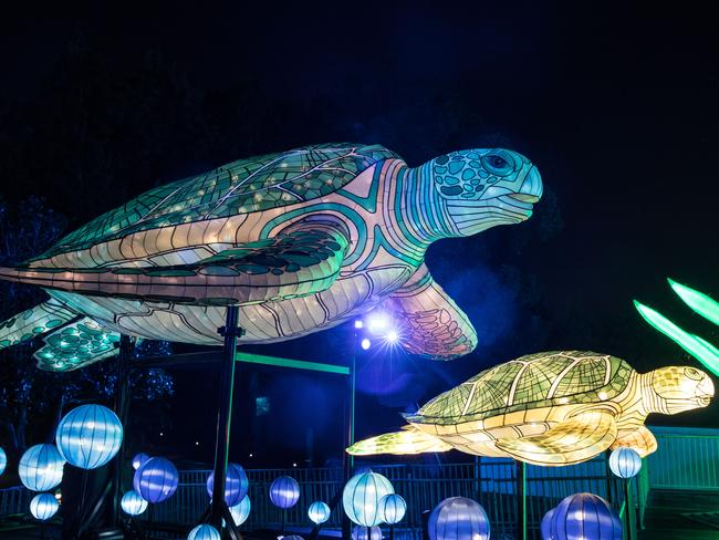 Giant turtles are part of the incredible installation at Taronga Zoo. Picture: Mark Kolbe/Getty Images