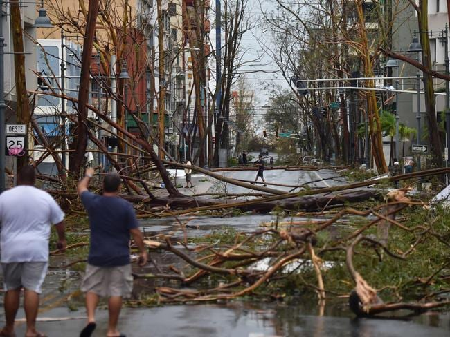 Men walk damaged trees after the passage of Hurricane Maria, in San Juan, Puerto Rico. Picture: AFP