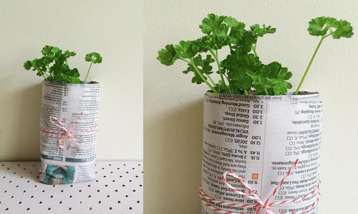 DIY newspaper plant pots