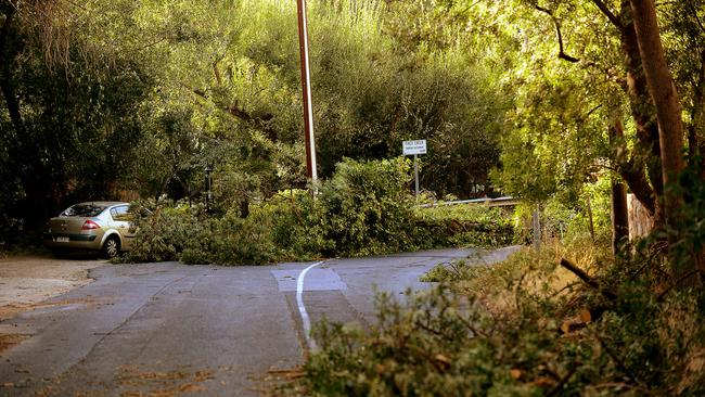 Wild storms swept across the city's east in February causing widespread power blackouts. Picture: Roy VanDerVegt.