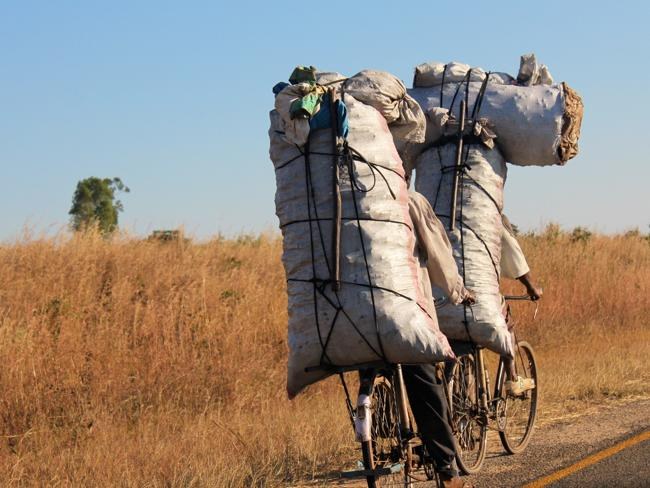 Men carrying supplies on bikes.