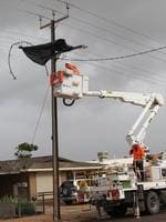 ETSA Utilities workers remove a shredded trampoline from a power pole in Collins Street, Ceduna. Picture: Andrew Brooks