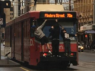 Supplied . Driving down Flinders street in footy traffic to see these young daredevils getting a free ride. And this was when half had already jumped off. I was watching as they jumped off only to run up the tracks to jump back on the back of another tram. Doing this for a least a kilometre to Elizabeth street.Supplied