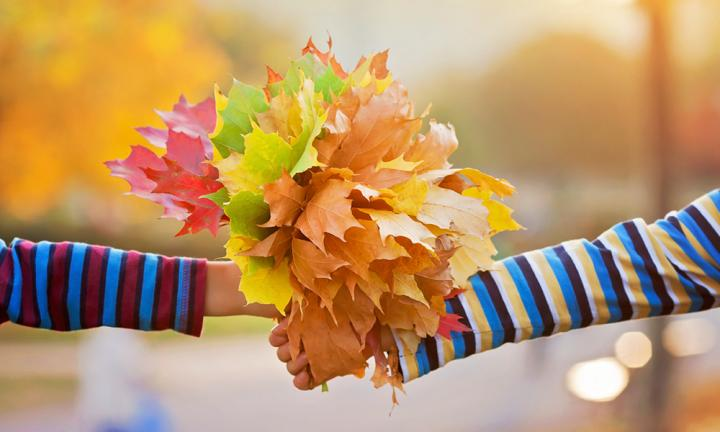 Autumn craft: Leafy activities from the great outdoors