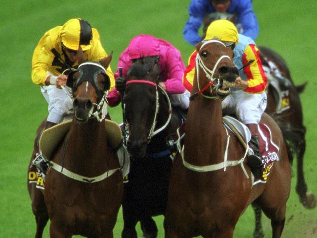 West Australian star Northerly claims the 2001 Cox Plate from Viscount (centre) and Sunline (right).