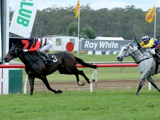 Tegan Harrison wins the Ipswich Cup aboard Brave Ali during the Queensland winter carnival. Picture Mark Cranitch