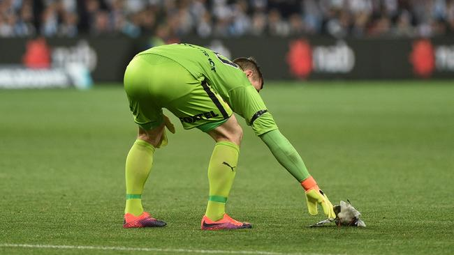 Danny Vukovic touches an injured seagull after it was struck in play during the FFA Cup final.