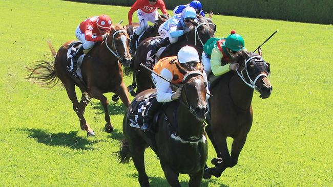 Anatola is among Josh Parr's rides at Randwick on Saturday. Picture: Getty Images