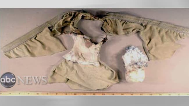 Hidden threat ... this image shows the explosive underwear that was smuggled onto Northwest Airlines Flight 253 by Umar Farouk Abdulmutallab.