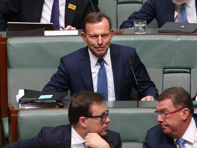 Backbench MP Tony Abbott has doubled down on his warnings that same-sex marriage will have broad consequences. Picture: Kym Smith