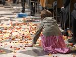 <p>A young girl collects some of the hundreds of thousands of petals that fluttered from the ceiling of St Paul's Cathedral in London.</p>