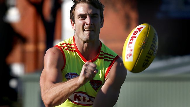 Jobe Watson hits the track at Windy Hill. Picture: Wayne Ludbey