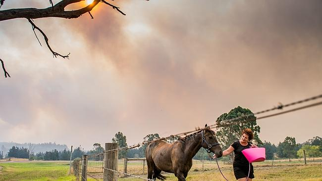 Morwell local Sue Plant moves her animals to safer ground. Picture: Jason Edwards