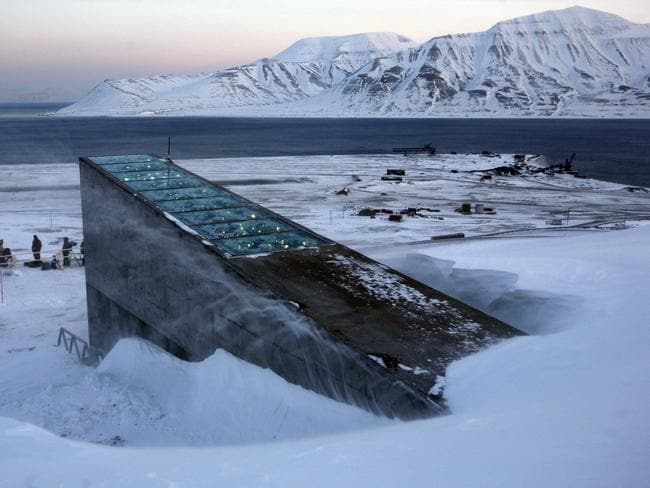 Snow blows off the Svalbard Global Seed Vault before being inaugurated at sunrise in February 2008. Picture: John McConnico/AP