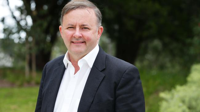 Former Deputy Prime Minister Anthony Albanese is also tipped to be a contender. Picture: Renee Nowytarger.