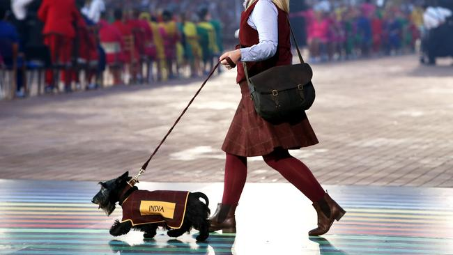 Some of the Scottish Terriers in the opening ceremony were less than well-behaved.