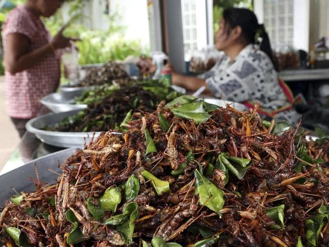 Fried grasshoppers at a market in Korat.