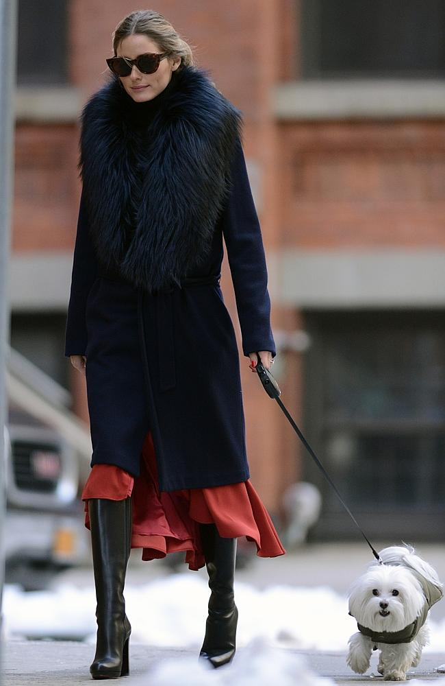 "Olivia Palermo walks her dog ""Mr. Butler"" — note the engagement ring!"