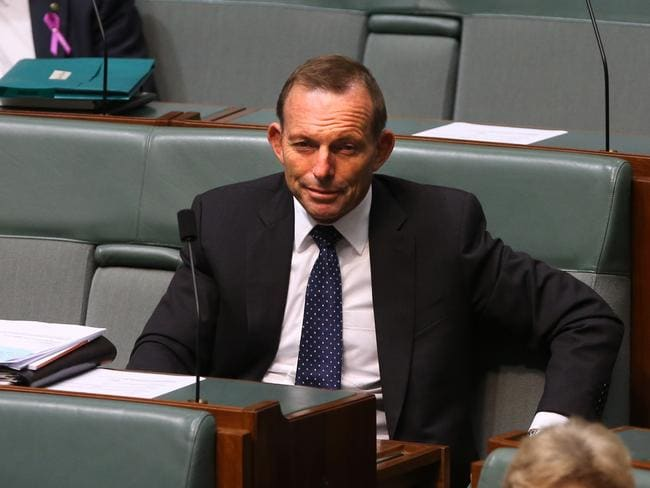 High-profile backbencher Tony Abbott in Question Time. Picture: Kym Smith