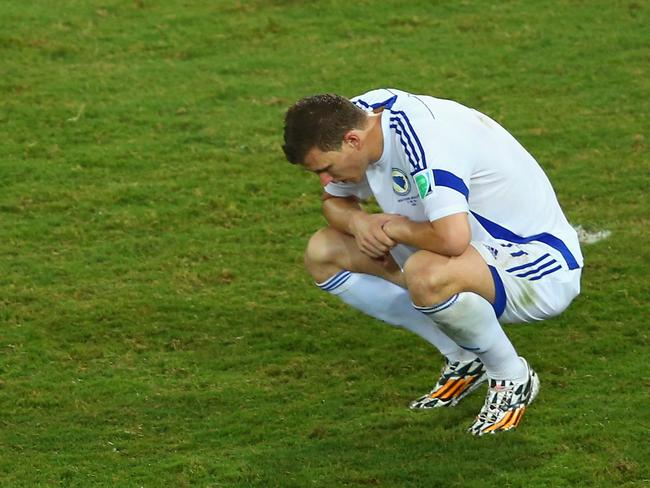 Bosnia-Herzegovina striker Edin Dzeko blew up over Peter O'Leary's performance.