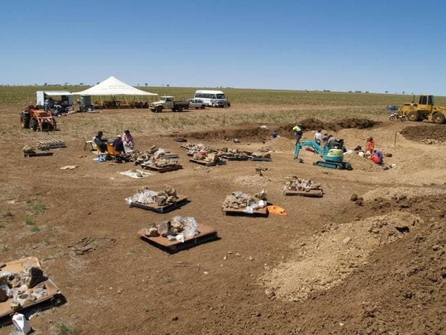 The dinosaur dig site in Winton where the bones have been painstakingly unearthed.