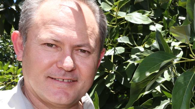 Avocados Australia chief executive John Tyas says the supply of avocados can't keep up with the demand. Picture: Andrea Falvo