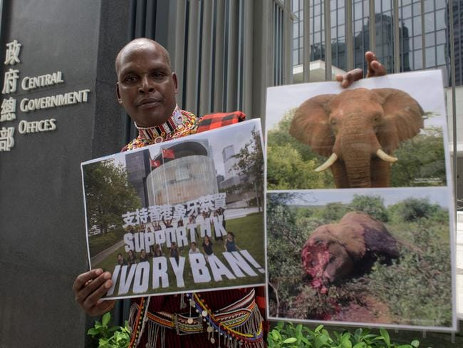 "Park ranger Chris Leadismo, the head of wildlife security at NGO Save the Elephants in northern Kenya, holds up a photo taken the day before showing activists holding letters which read ""Support HK Ivory Ban!"" and photos of an elephant before and after it was killed for its tusks. Picture: Anthony Wallace"