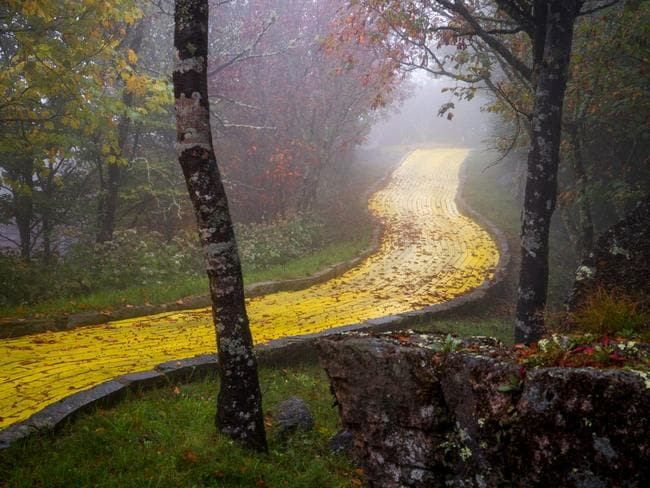 Follow the yellow brick road ... Picture: Johnny Joo Photography