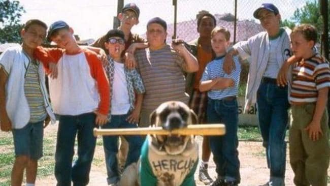 Hercules was an English Mastiff.