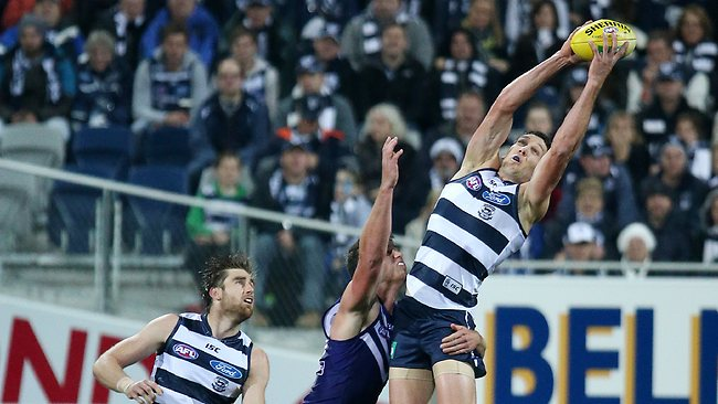 Geelong defender Harry Taylor starred in the Cats win over Fremantle. Picture: George Salpigtidis