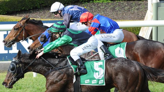 Randwick tips: Big bets and market movers