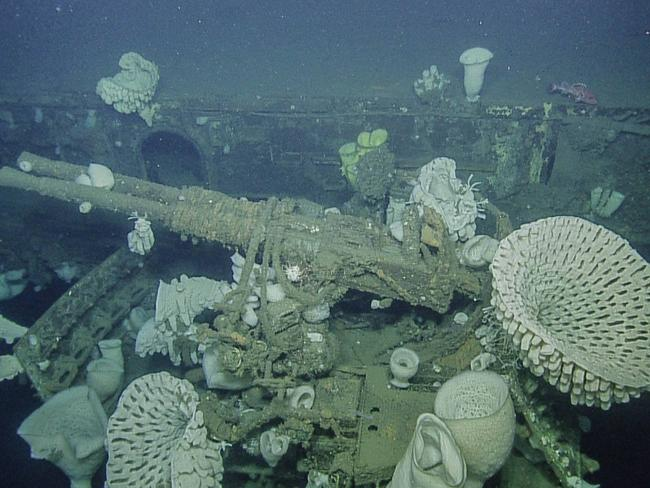 Incredible photos of sunken WWII ship