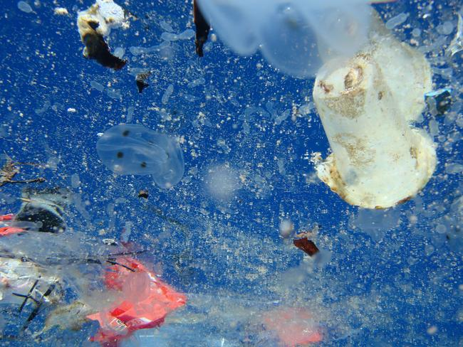 The amount of plastic in our oceans has reached an alarming level.