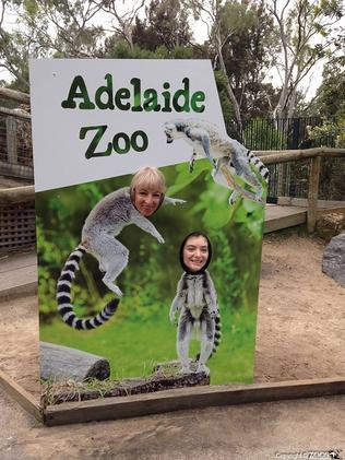 New Zealand musical sensation Lorde at Adelaide Zoo. Picture: Adelaide Zoo