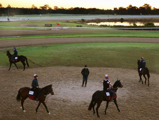 John O'Shea organises his team at Warwick Farm trackwork where Darley has nearly 100 gallopers in training. Picture: Mark Evans