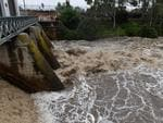 Flooding at the Torrens weir. Picture: Campbell Brodie