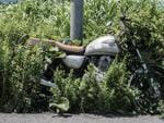 A motorbike left next to a lamppost in 2011. Since the disaster weeds have grown over much of the bike's wheel. Fukushima, Japan. Picture: Arkadiusz Podniesinski/REX Shutterstock /australscope