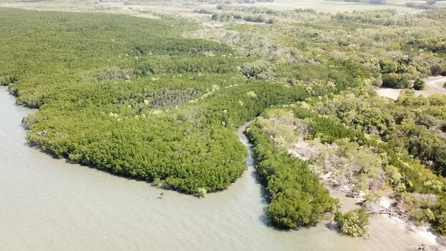 Mouth of the creek where clothing and remains thought to belong to Anne Cameron were found south of Port Douglas. Picture: GAZELLE GHIDELLA