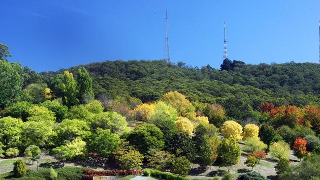 The Mt Lofty Botanic Garden is a Hills icon. The Hills are known for their sense of community, boutique shops and wineries and of course, greenery.