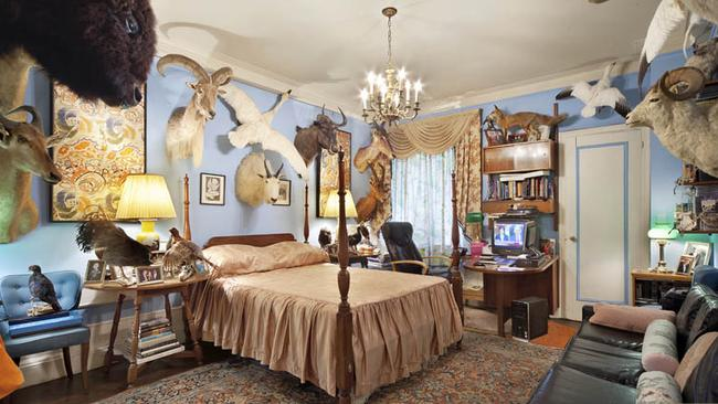 Another bedroom with plenty of animals on display. Pictures: Halstead Property.