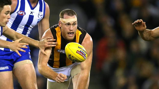 Jarryd Roughead is a favourite at the Hawks. Picture: Wayne Ludbey