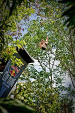 <p>Gary Hunt of England dives from the 27.25 metre platform during the first round of the second stop of the Red Bull Cliff Diving World Series.</p>  <p>Picture: Romina Amato / Red Bull Cliff Diving</p>