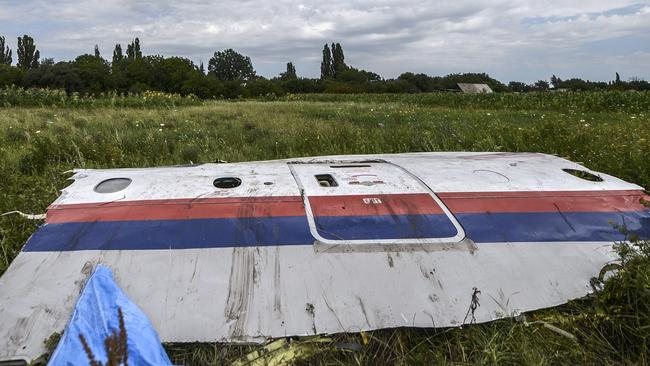 A piece of the wreckage of the Malaysia Airlines flight MH17 is pictured in a field near the village of Grabov. AFP PHOTO/ BULENT KILIC