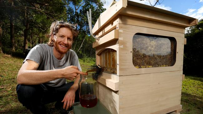 australian story flow hive for beekeepers worth millions from cedar anderson the courier mail. Black Bedroom Furniture Sets. Home Design Ideas