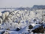 AMERICA: Ice covers rocks and brush on the break wall at Edgewater Park in Cleveland. Picture: AP