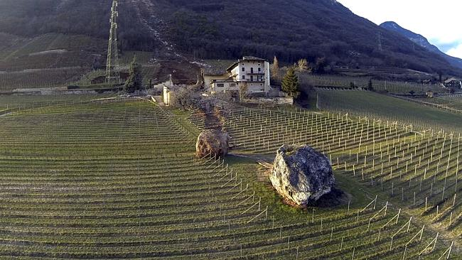 At rest ... one of the boulders finally stopped in the farm's vineyard. Another boulder in the foreground is from a much older landslide. Pic: Markus Hell/Tareom.com.