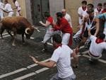 A Miura fighting bull faces revelers before goring one of them during the running of the bulls at the San Fermin festival, in Pamplona, Spain, Monday, July 14, 2014. Revelers from around the world arrive to Pamplona every year to take part in some of the eight days of the running of the bulls. (AP Photo/Andres Kudacki)