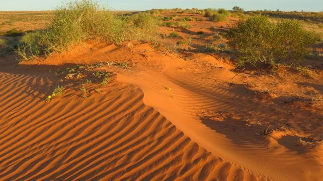 The Simpson Desert — a violence free model for the lockouts?