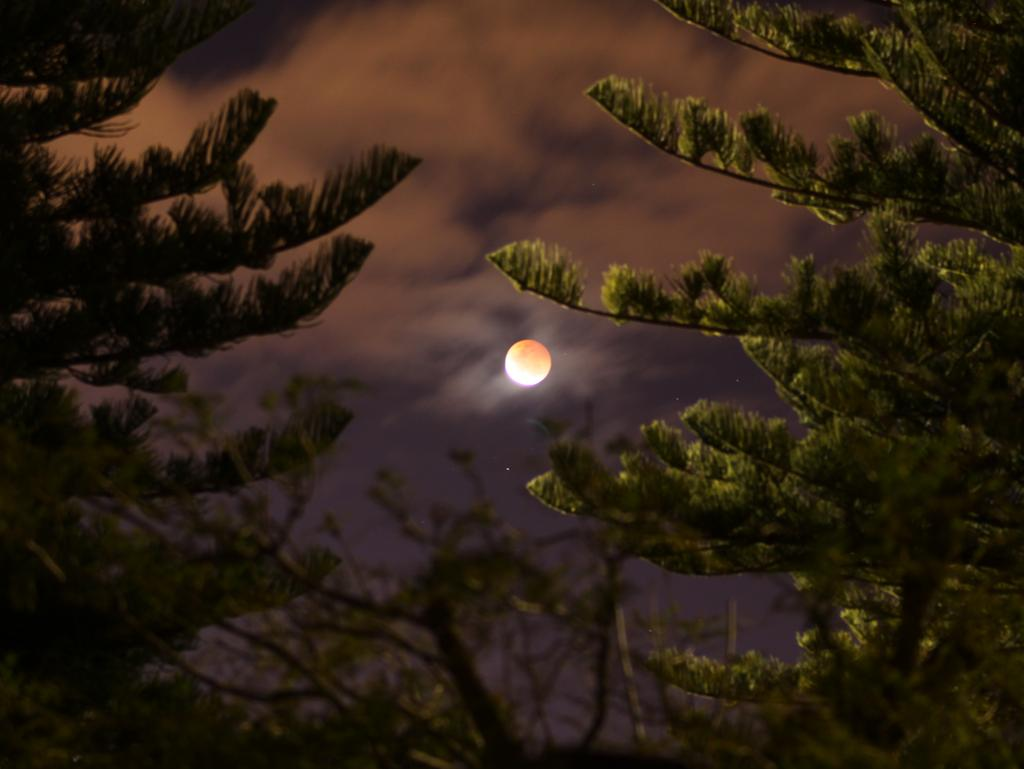 Blood moon dates in Perth